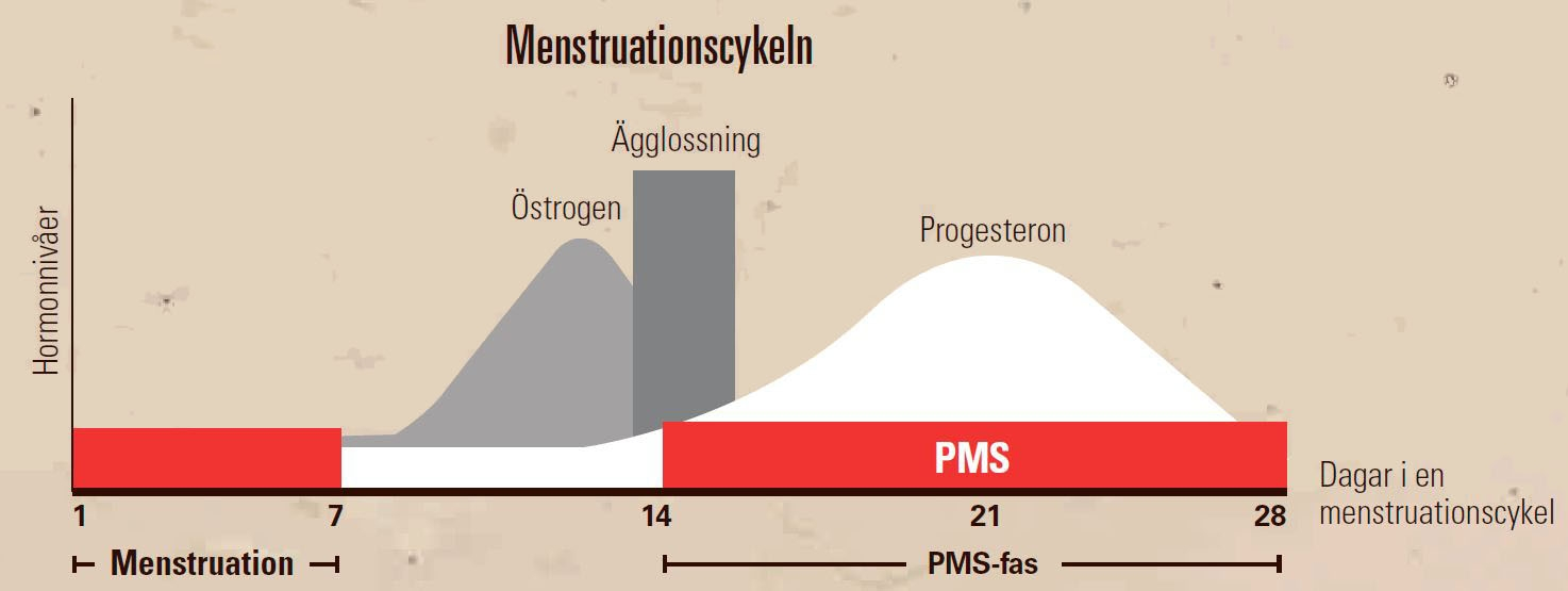 progesteron mot pms