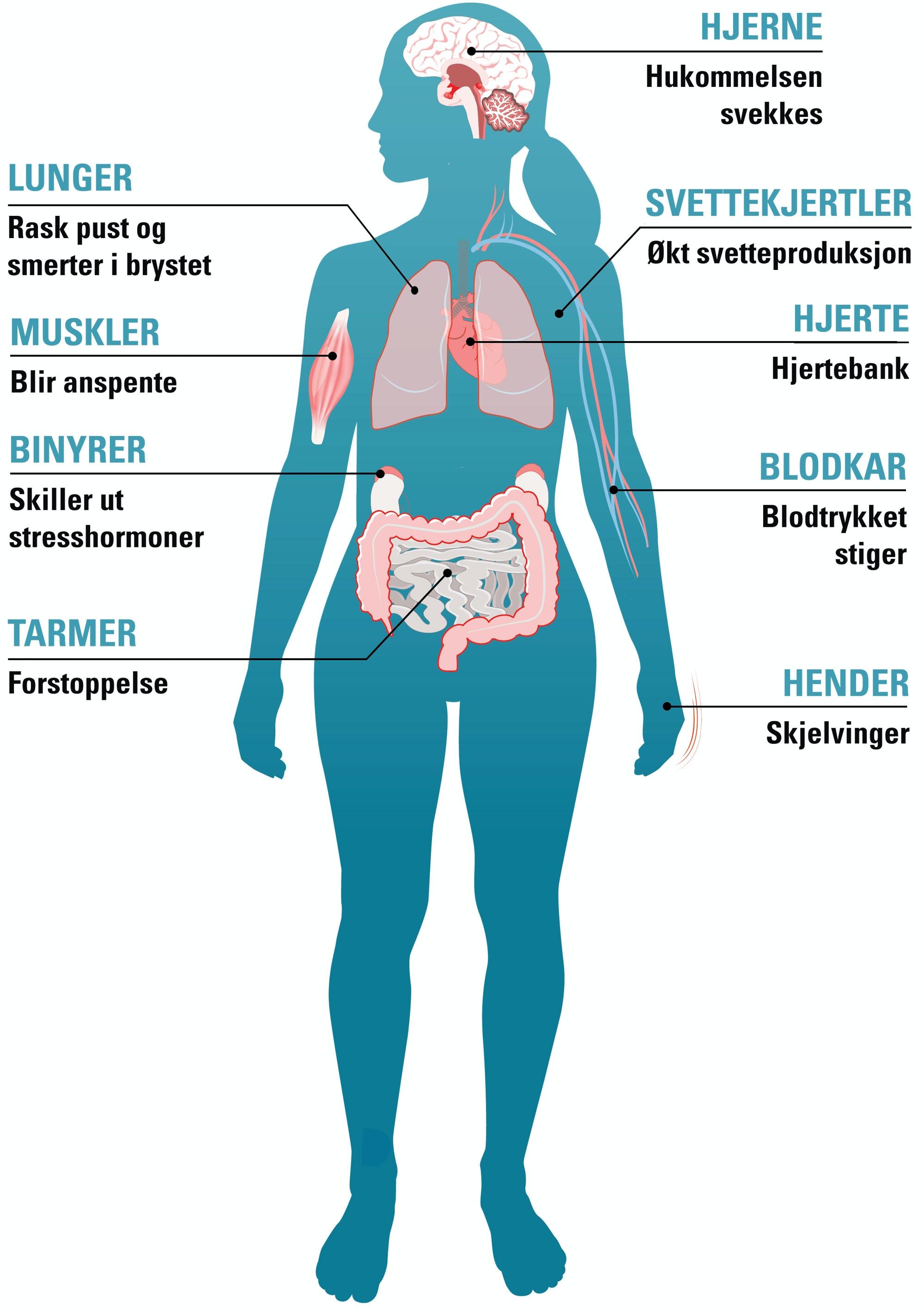 muskelsmerter i hele kroppen