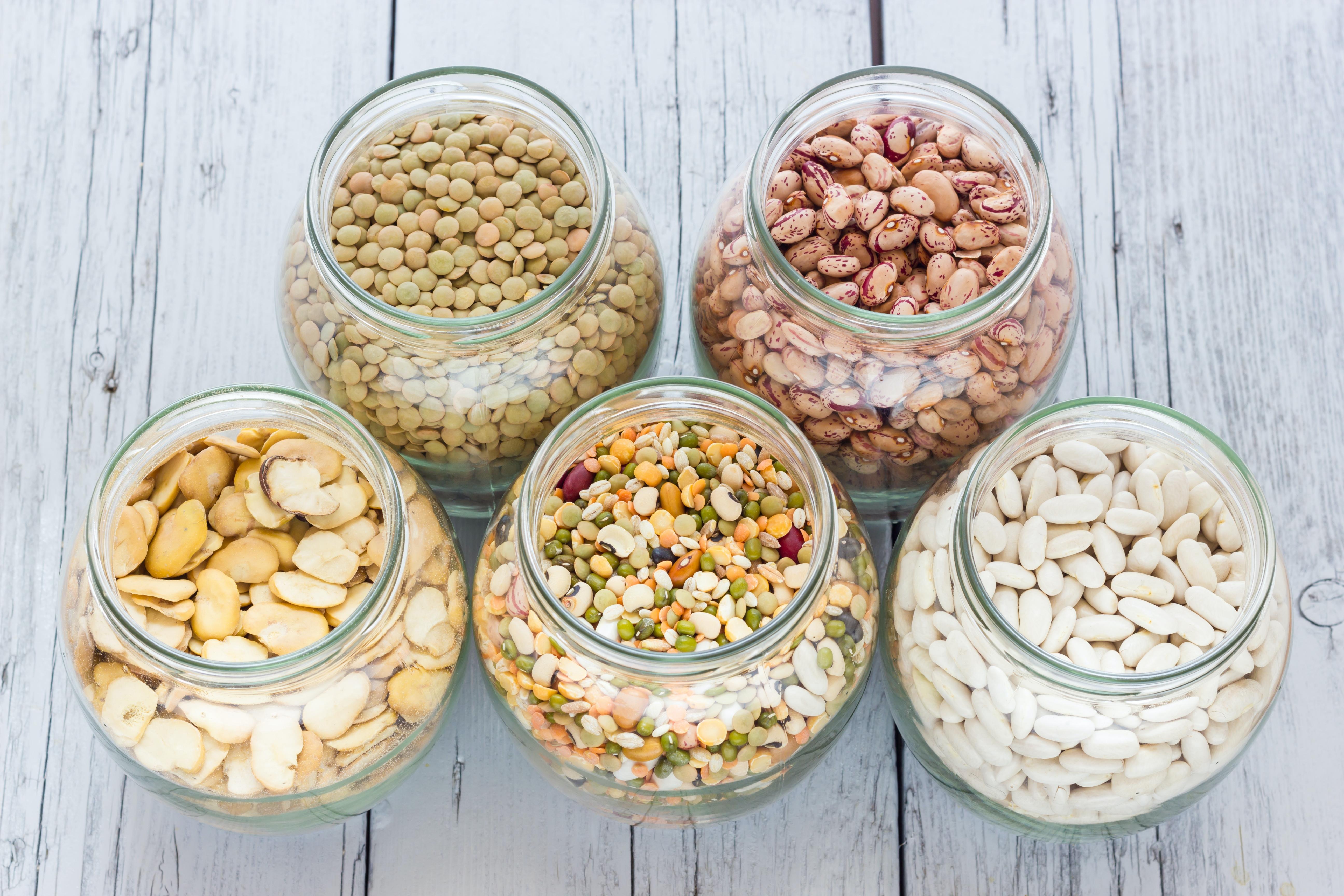 proteinrik fettsnål mat