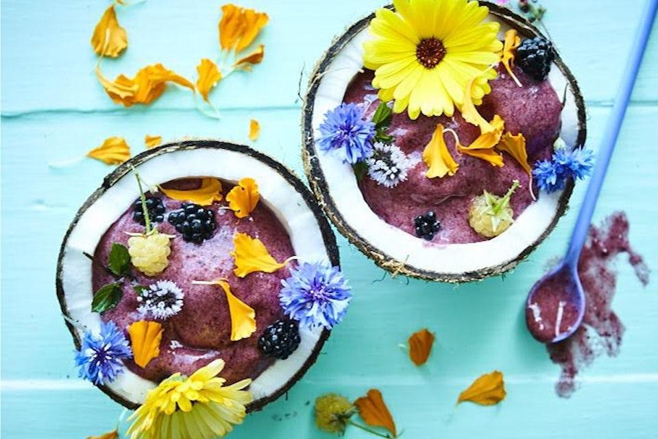 Softis med bjørnebær i kokosnøtt
