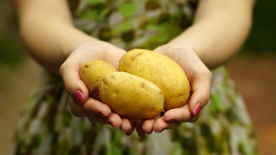 Kvinde står med kartofler i hænderne.