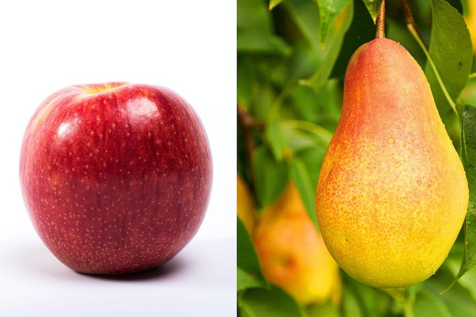 Omenoita ja päärynöitä