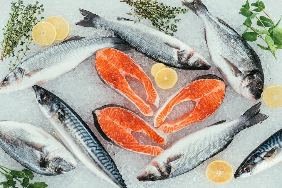 Forskellige fede fisk