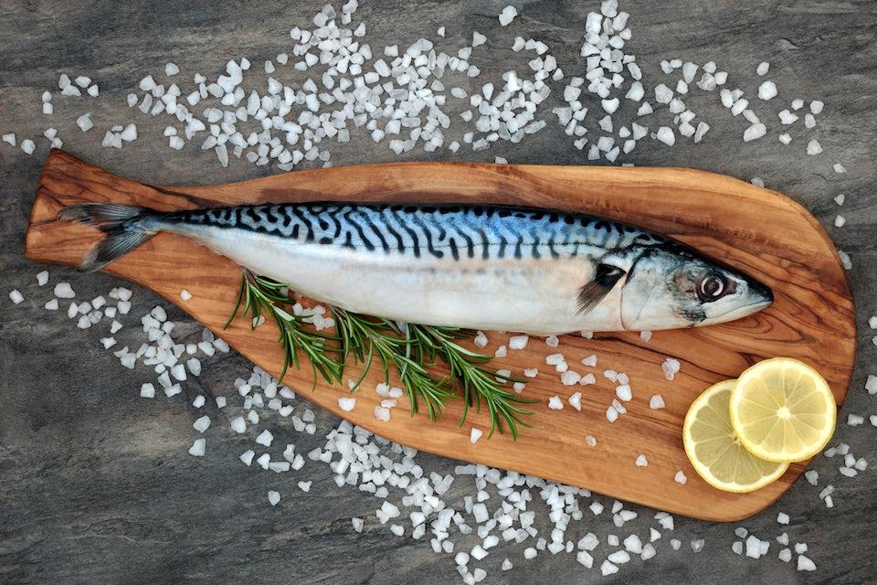 Rasvainen kala